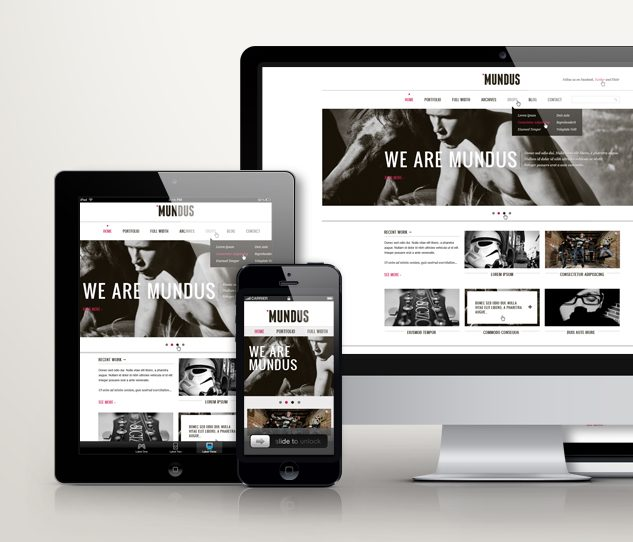 Mobile Responsive Website Design 2